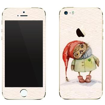 Виниловая наклейка «Сова в пальто» на телефон Apple iPhone 5