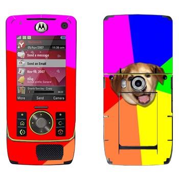 Виниловая наклейка «Advice Dog» на телефон Motorola Z8 Rizr