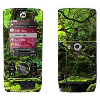 Виниловая наклейка «Лес во мху» на телефон Motorola Z8 Rizr