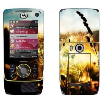 Виниловая наклейка «Паутина» на телефон Motorola Z8 Rizr