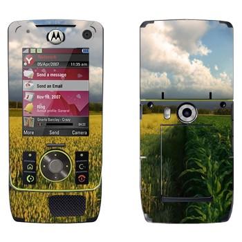 Виниловая наклейка «Поле кукурузы и небо» на телефон Motorola Z8 Rizr