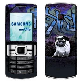 Samsung C3010