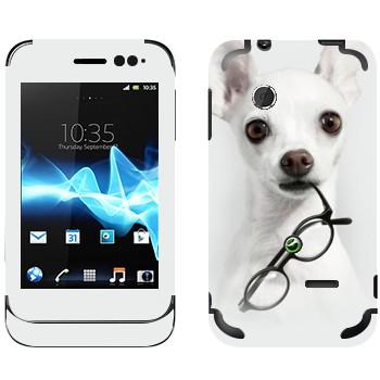 Виниловая наклейка «Белый щенок с очками» на телефон Sony Xperia Tipo