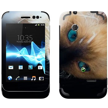 Виниловая наклейка «Голубоглазая кошка» на телефон Sony Xperia Tipo