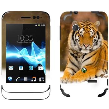 Виниловая наклейка «Уссурийский тигр» на телефон Sony Xperia Tipo