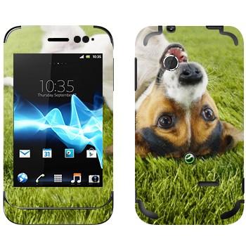 Виниловая наклейка «Веселый щенок на траве» на телефон Sony Xperia Tipo